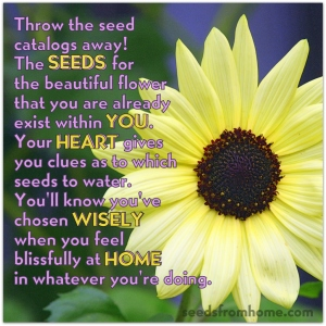 SEEDSfromHOMEwithinYOU